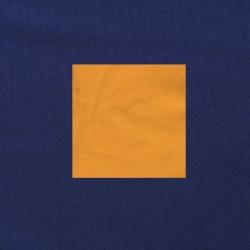 Maisgeel op donkerblauw