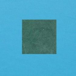 Blauwgroen op helderblauw
