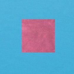 Donkerroze op helderblauw