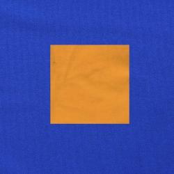 Maisgeel op kobaltblauw