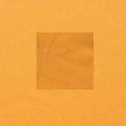 Maisgeel op oranjegeel