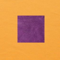 Paars op oranjegeel